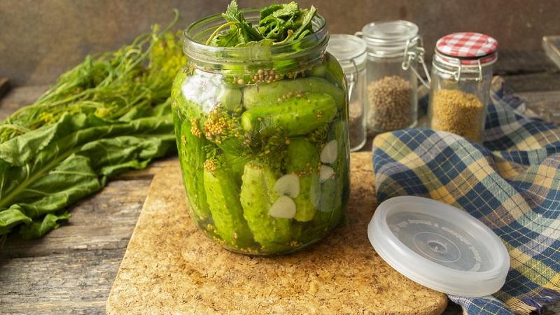 Простые и вкусные рецепты в вашу коллекцию: маринованные огурцы холодным способом