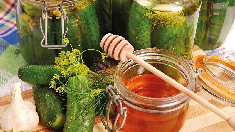 Заготовки из огурцов на зиму: самый вкусный рецепт консервирования