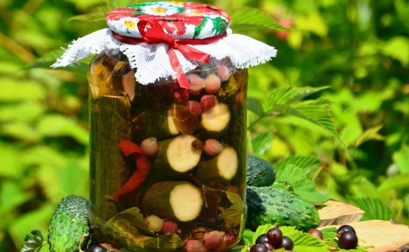 Соленые огурцы на зиму без уксуса - как приготовить и хранить